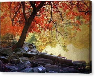Canvas Print featuring the photograph Under The Maple by Jessica Jenney