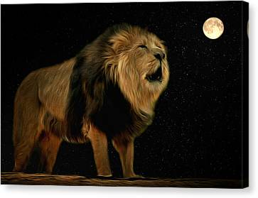 Under The Moon Canvas Print by Scott Carruthers