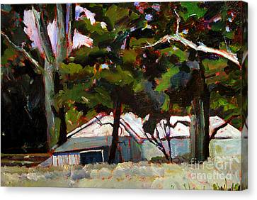 Under The Pines Canvas Print by Charlie Spear