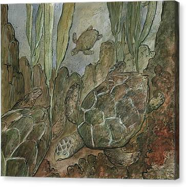 Under The Sea A Turtles Life Canvas Print by Gerry High