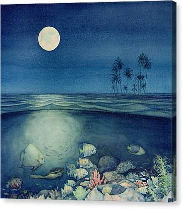 Siesta Key Canvas Print - Under The Sea by Shawn McLoughlin
