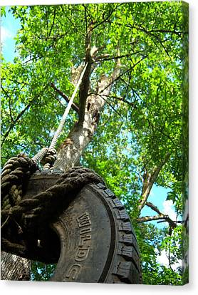 Under The Tire Swing Canvas Print by Ken Day