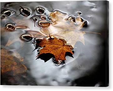 Under Water Fall Canvas Print by LeeAnn McLaneGoetz McLaneGoetzStudioLLCcom