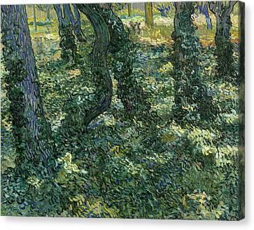 Dutch Landscapes Canvas Print - Undergrowth by Vincent van Gogh