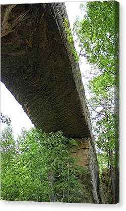 Underneath Natural Bridge In Slade Kentucky Canvas Print by Design Turnpike