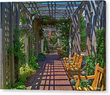 Underneath The Arbor Canvas Print by Julie Grace