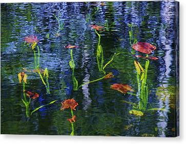 Canvas Print featuring the photograph Underwater Lilies by Sean Sarsfield
