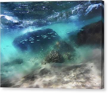Underwater Canvas Print