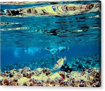 Underwater World. Beautiful Fish. Canvas Print by Andy Za