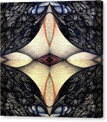 undesignated image XI twentyseven Canvas Print by Jack Dillhunt