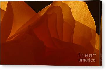 Canvas Print featuring the photograph Une Dame by Danica Radman