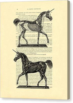 Unicorns Anatomy Canvas Print by Madame Memento