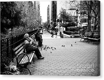 Union Square Park Days Canvas Print by John Rizzuto