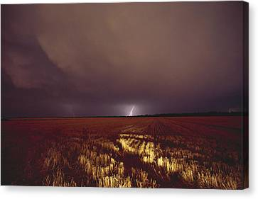 United States, Kansas, Lightning Canvas Print by Keenpress