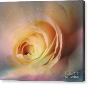 Canvas Print featuring the photograph Universal Rose by Kristine Nora