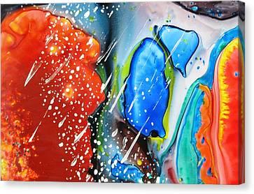 Universe Six Canvas Print by David Raderstorf
