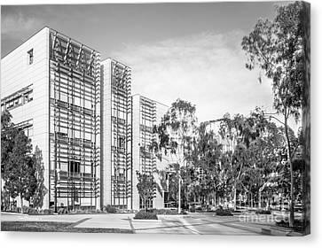 University Of California San Diego Bioengineering  Canvas Print by University Icons