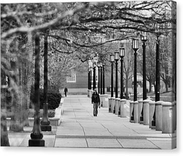 University Walk Canvas Print by Coby Cooper