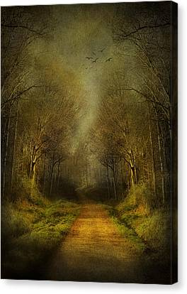 Park Scene Canvas Print - Unknown Footpath by Svetlana Sewell