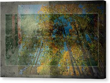 Canvas Print featuring the photograph Unmanned by Mark Ross