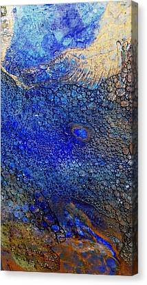 Untitled 12 Canvas Print by Tia Marie McDermid
