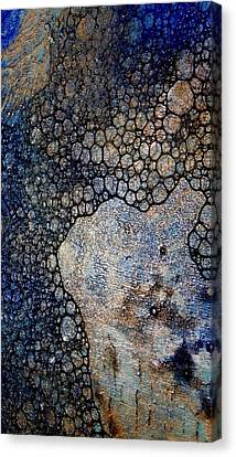 Untitled 13 Canvas Print by Tia Marie McDermid