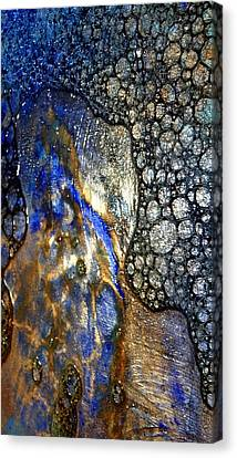 Untitled 14 Canvas Print by Tia Marie McDermid