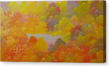 Untitled 53 Canvas Print by David Snider
