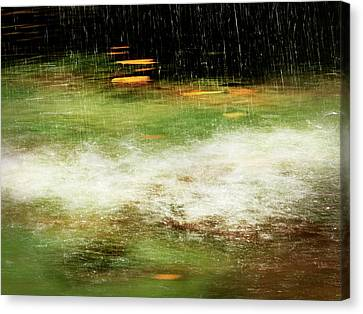 Untitled #8090498, From The Soul Searching Series Canvas Print