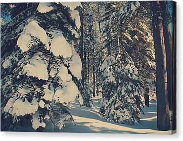 Snow-covered Landscape Canvas Print - Untouched by Laurie Search