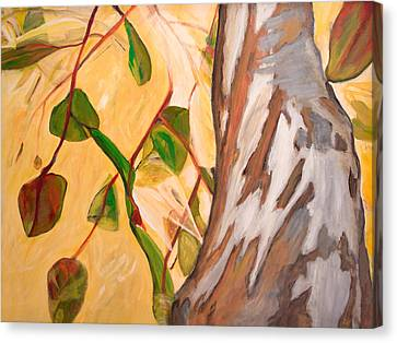 Up Canvas Print by Darla Nyren
