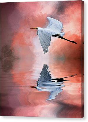 Up. Up And Away Canvas Print by Cyndy Doty