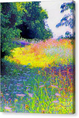 Uphill In The Meadow Canvas Print by Shirley Moravec