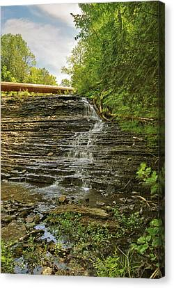 Upper Au Train Falls Canvas Print by Michael Peychich