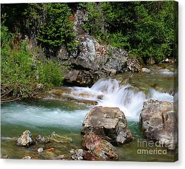 Upper Falls Canvas Print by Crystal Garner