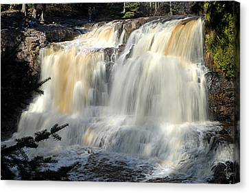 Upper Falls Gooseberry River Canvas Print by Larry Ricker