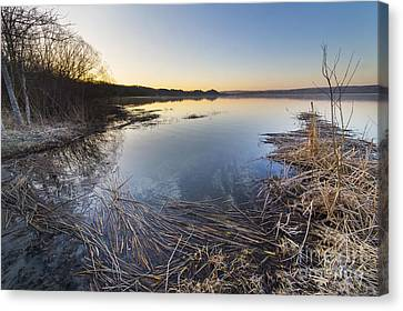 Herring Canvas Print - Upper Herring Lake Spring Morning by Twenty Two North Photography