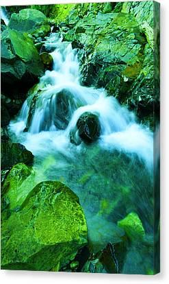 Falling Water Creek Canvas Print - Upper Morse Creek Falls by Jeff Swan