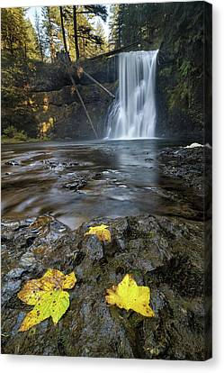 Upper North Falls In Autumn Canvas Print by David Gn