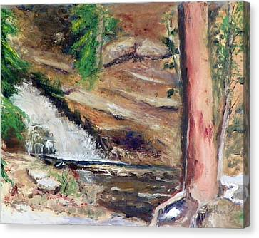 Upper Provo River Falls Canvas Print by Sherril Porter