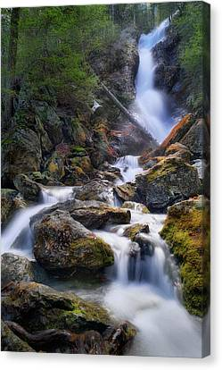 Canvas Print featuring the photograph Upper Race Brook Falls 2017 by Bill Wakeley