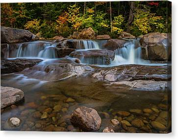 Canvas Print featuring the photograph Upper Swift River Falls In White Mountains New Hampshire by Ranjay Mitra