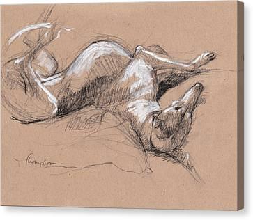 Greyhound Canvas Print - Upside Hound 2 by Tracie Thompson
