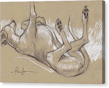 Greyhound Canvas Print - Upside Hound 3 by Tracie Thompson