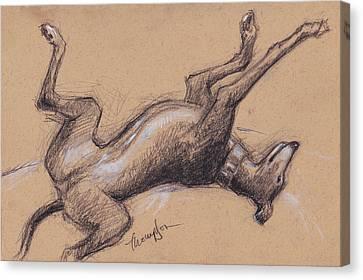Greyhound Canvas Print - Upside Hound by Tracie Thompson