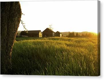 Upstate Ny Farm Canvas Print by Henri Irizarri