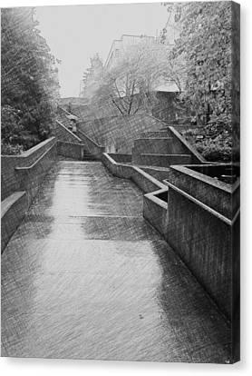Seattle Canvas Print - Upward Path by Eddie G