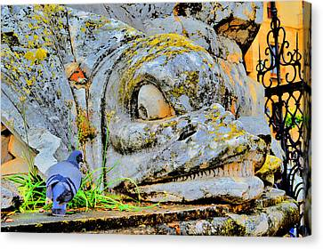 Urban Motifs. What Do You Want Feathered? Canvas Print