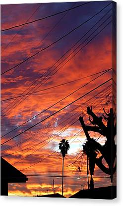 Urban Sunrise Canvas Print by Shannon McMannus