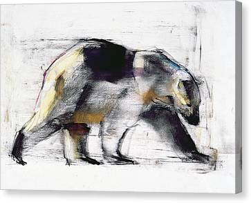 Ursus Maritimus Canvas Print by Mark Adlington